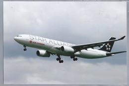 LUCHTVAART. VLIEGTUIG. AVION. - C-GHLM -. STAR ALLIANCE. AIR CANADA. Airbus A330-343. - Aviazione