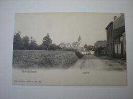 WOLVERTHEM - L'EGLISE - NELS SERIE 11 N° 593 - Meise