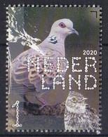 Nederland - Beleef De Natuur - Boerenlandvogels - Zomertortel - MNH - NVPH 3828 - Unused Stamps