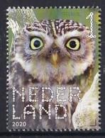 Nederland - Beleef De Natuur - Boerenlandvogels - Steenuil - MNH - NVPH 3831 - Unused Stamps