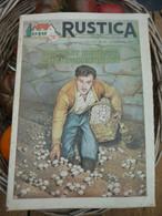 """Ancienne Revue Des Campagnes """" Rustica """" Sur La Nature Et Le Jardinage - 18 Septembre 1955 - Giardinaggio"""