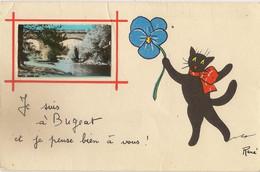 RENE LUCKY BLACK CAT   JE SUIS A BUGEAT  CORREZE LIMOUSIN FRANCE 19 Pu 1960    ANIMALS CATS - Cats