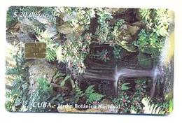 CUBA, Used Chip Phonecard, In Perfect Condition, Jardín Botánico Nacional, # Cuba-61 - Cuba