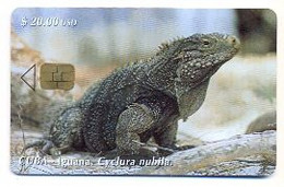CUBA, Used Chip Phonecard, In Perfect Condition, Iguana, # Cuba-85 - Cuba