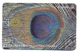 CUBA, Used Chip Phonecard, In Perfect Condition, Pluma De Pavo Real, # Cuba-90 - Cuba