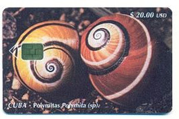 CUBA, Used Chip Phonecard, In Perfect Condition, Polymitas, # Cuba-100 - Cuba