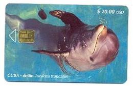 CUBA, Used Chip Phonecard, In Perfect Condition, Delfín, # Cuba-103 - Cuba