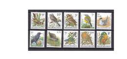 G466. Belgium / Belgique / België / Birds / Pajaros / Oiseaux / Aves - Sperlingsvögel & Singvögel