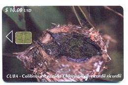 CUBA, Used Chip Phonecard, In Perfect Condition, Colibries En Su Nido, # Cuba-119 - Cuba