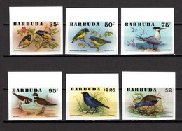 BARBUDA N° 251 à 256   NON DENTELES   NEUFS SANS CHARNIERE  COTE  ? €    ANIMAUX  OISEAUX - Antigua And Barbuda (1981-...)