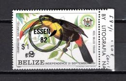 BELIZE N° 580   NEUF SANS CHARNIERE   COTE 5.00€   OISEAUX ANIMAUX - Belize (1973-...)