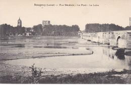 Beaugency, Vue Générale, Le Pont, La Loire (pk70485) - Beaugency