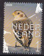 Nederland - Beleef De Natuur - Kustvogels - Sneeuwgors - MNH - NVPH 3852 - Songbirds & Tree Dwellers