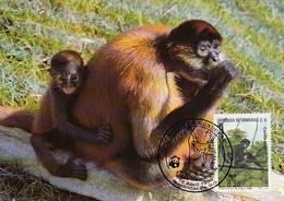 Honduras 1990 Maxicard Sc #C792 20c Geoffroy's Spider Monkey WWF - Honduras