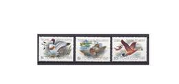 G470. URSS / 1989 / USSR / Aves / Oiseaux / Birds / Canards / Ducks / Patos - Entenvögel