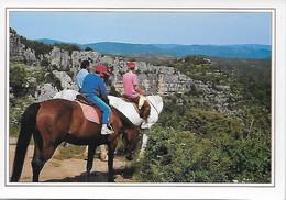 CPSM - LA CAMARGUE - Chevaux -Balade à Cheval Dans Les Gorges - Horses