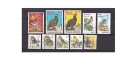 G471. Belgium / Pakistan / USA / Birds / Pajaros / Oiseaux / Aves - Konvolute & Serien