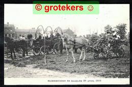 HAARLEM Bloemencorso 1919 - Haarlem