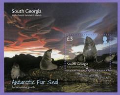 South Georgia 2018. Fauna. Antarctic Fur Seals. MNH - Géorgie Du Sud