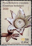 2020 Flora, Geastrum Berkeleyi, Montenegro, MNH - Montenegro
