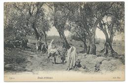 CPA ALGERIE / ETUDE D'OLIVIERS / NEUVE - Scenes
