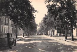 DRAGUIGNAN - L'Avenue Carnot - Draguignan
