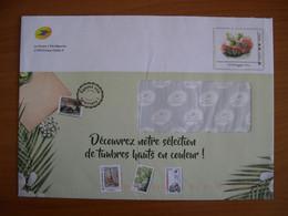 Enveloppe La Poste  162x230 Montimbramoi International 250g Voiture - PAP:  Varia (1995-...)