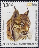 2019, Balkanski Ris, Lynx Lynx Martinoi, Animals, Montenegro, MNH - Montenegro