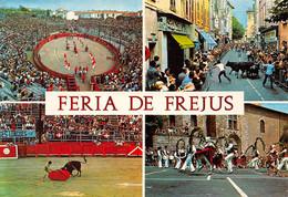 FREJUS - Feria - Arènes Romaines - Corrida - Vaches, Taureaux - Frejus