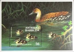 Antigua 1994 Whistling Duck Birds Minisheet MNH - Zonder Classificatie