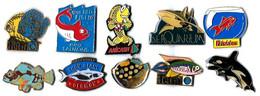 POISSONS - PO1  - LOT 10 Pin's Différents - Verso : DIVERS - Badges