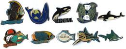 POISSONS - PO2  - LOT 10 Pin's Différents - Verso : DIVERS - Badges