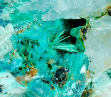 Malachite E Calcopirite (Val Di Stabio, Breno, Brescia, Italia) - Lot. S341 - Minéraux
