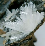 Aragonite (Miniera L'Andeghi, Schilpario, Bergamo, Italia) - Lot. S349 - Minéraux