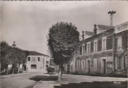 CPSM 85 SAINT-MICHEL EN L'HERM   PLACE DE LA MAIRIE CAMION HOTEL CENTRAL - Saint Michel En L'Herm