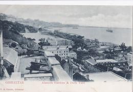 AP90 Alameda Gardens And Dock Yard, Gibraltar - Undivided Back - Gibraltar