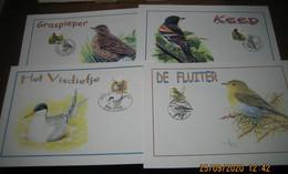 4 Kaarten Buzin - 1985-.. Vögel (Buzin)
