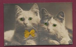 280920B - CHAT - 2 Chats Aux Yeux Verts En Verre Et Ruban Jaune - Katzen