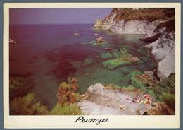 °°° Cartolina - Isola Di Ponza Le Forna Piscine Naturali Viaggiata °°° - Latina
