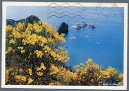 °°° Cartolina - Isola Di Ponza Gimestre A Lucia Rosa Viaggiata °°° - Latina