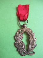 Mini-Médaille / Palmes Avec Ruban Rouge / Origine: Jeu D'enfant ?/ France / Bronze /  Vers 1900                  MED385 - France