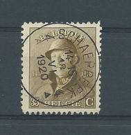 N°172 OBLITERE SCHAERBEEK - 1919-1920 Roi Casqué