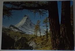 Zermatt - Matterhorn - Formato Grande Viaggiata – E 17 - ZH Zurich