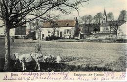 Beez  Circulée En 1901 - Namur
