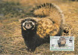 Kazakhstan 1997 Maxicard Sc #174 46te Marbled Polecat WWF - Kazajstán