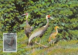 Korea, South 1988 Maxicard Sc #1508b 80w White-naped Crane WWF - Corée Du Sud