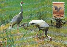 Korea, South 1988 Maxicard Sc #1508c 80w White-naped Crane WWF - Corée Du Sud