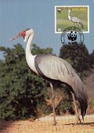 Malawi 1987 Maxicard Sc #494 8t Wattled Crane WWF - Malawi (1964-...)