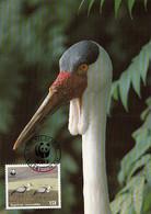 Malawi 1987 Maxicard Sc #495 15t Wattled Crane WWF - Malawi (1964-...)