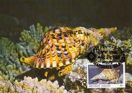 Marshall Islands 1986 Maxicard Sc #110 14c Triton's Trumpet Snail WWF - Marshallinseln